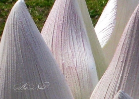 Садова скульптура Лотос